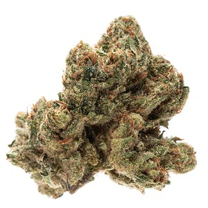 Our Buy OG Kush for sale makes up the genetic backbone of West Coast cannabis varieties. But in spite of its ubiquity, its genetic origins remain a mystery.