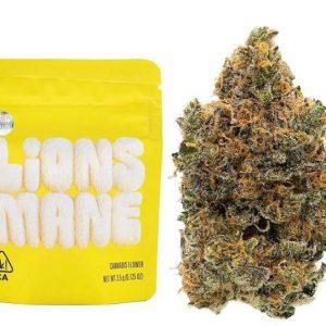 Lions Mane